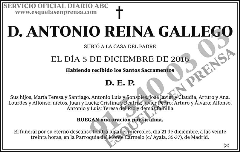 Antonio Reina Gallego